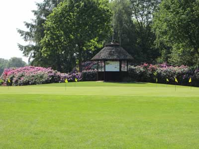 Rhodoblüte Putting Green